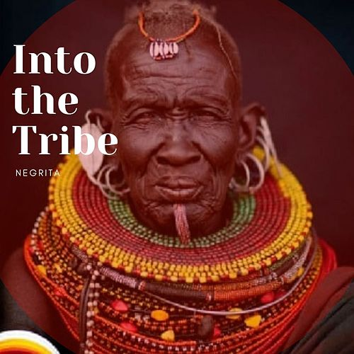 Into the Tribe di Negrita