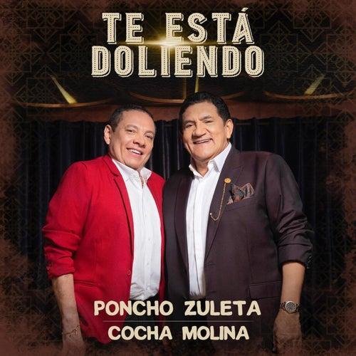 Te Está Doliendo by Poncho Zuleta
