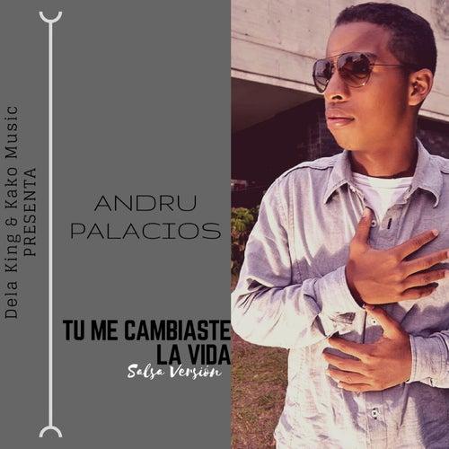 Tú Me Cambiaste la Vida von Andru Palacios