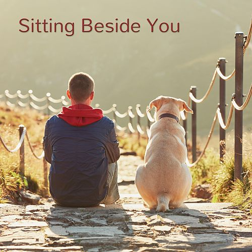 Sitting Beside You de Matt Johnson