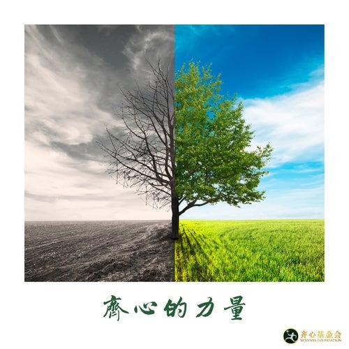 齊心的力量 by 劉凱熙