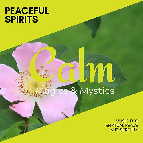 Peaceful Spirits - Music for Spiritual Peace and Serenity de Meditation Zen Master
