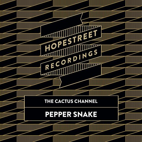 Pepper Snake/The Dap de The Cactus Channel