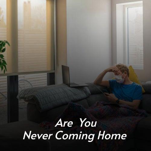 Are You Never Coming Home de Sandy Posey, Frankie Dee, Rolf Harris, Billy Vaughn, Billy Vaughn