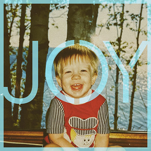 Joy by Scott Mulvahill