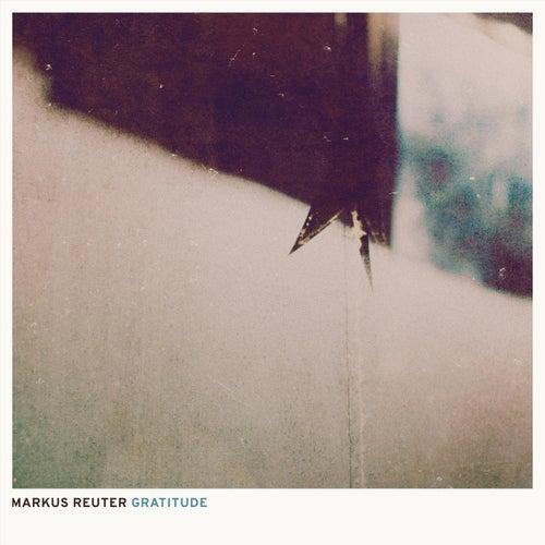 Gratitude by Markus Reuter