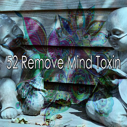 52 Remove Mind Toxin von Music For Meditation