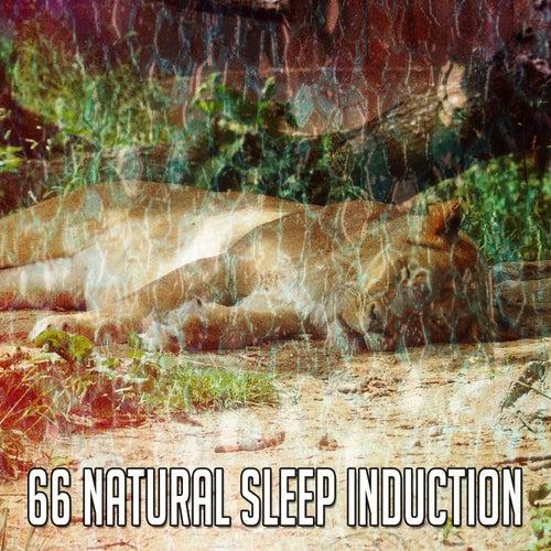 66 Natural Sleep Induction by Baby Sleep Sleep