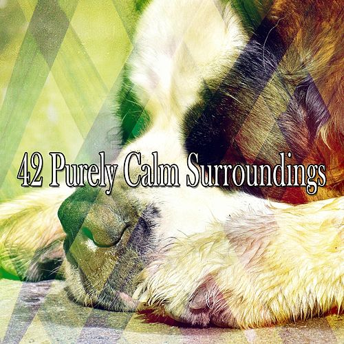 42 Purely Calm Surroundings by S.P.A