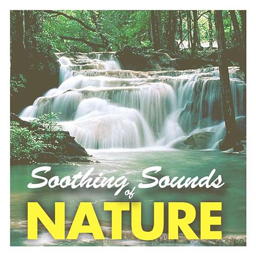 Soothing Sounds of Nature by Relax - Meditate - Sleep