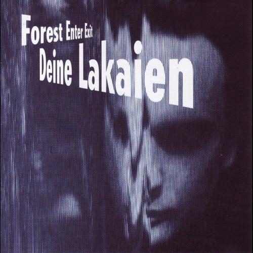 Forest Enter Exit + Mindmachine von Deine Lakaien