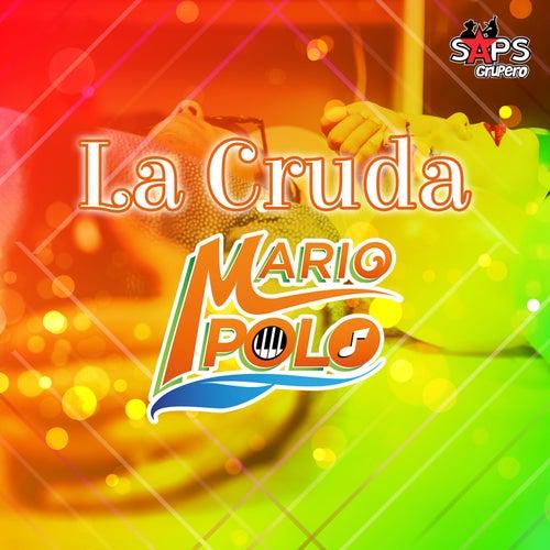 La Cruda de Mario Polo