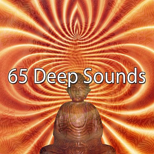 65 Deep Sounds de Zen Meditation and Natural White Noise and New Age Deep Massage