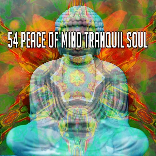 54 Peace of Mind Tranquil Soul de Zen Meditate