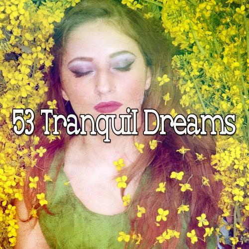 53 Tranquil Dreams de Sleepicious