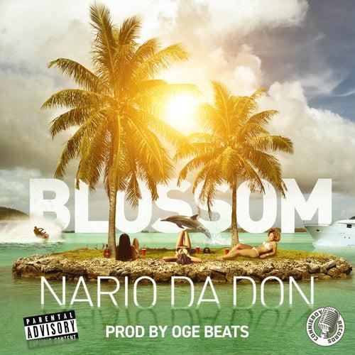 Blossom by Nario Da Don