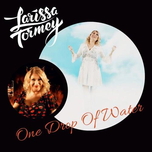 One Drop of Water de Larissa Tormey