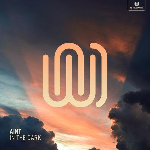 In the Dark von Aint