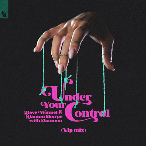 Under Your Control (VIP Mix) by Dave Winnel