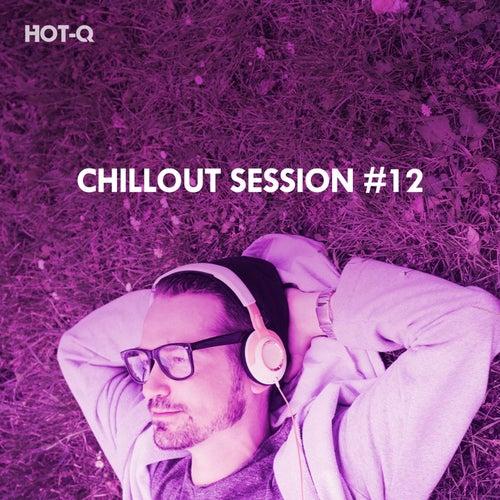 Chillout Session, Vol. 12 de Hot Q