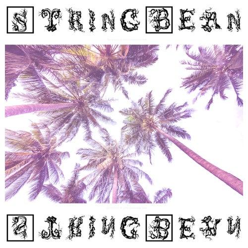 Palm City de Stringbean