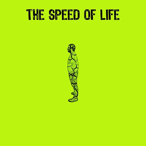 The Speed of Life by TC