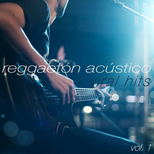 Viral Hits, Vol. 1 de Reggaeton Acústico