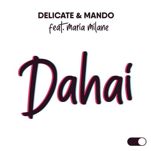 Dahai by Delicate