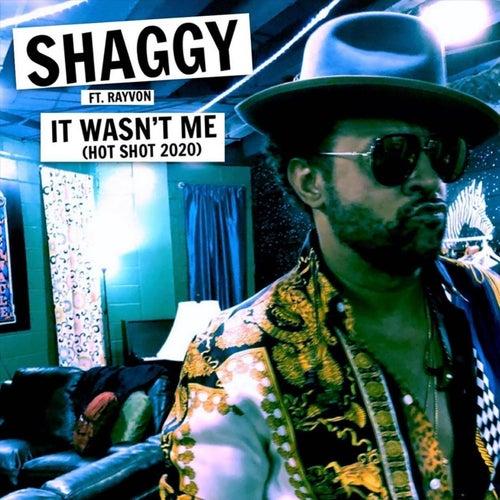 It Wasn't Me (Hot Shot 2020) [feat. Rayvon] de Shaggy