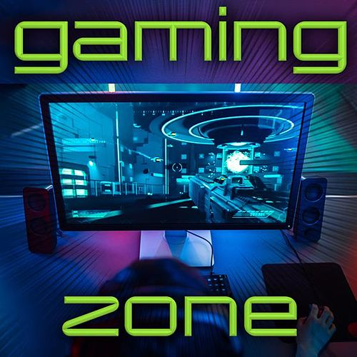 Gaming Zone by Various Artists