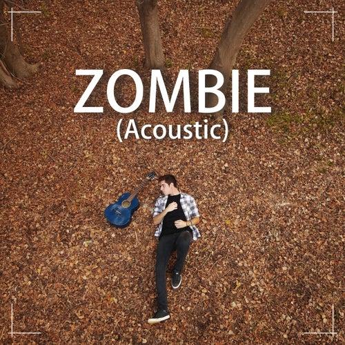 Zombie (Version Acústica) de Damian Gasparini
