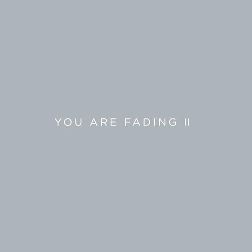 You Are Fading, Vol. 2 (Bonus Tracks 2005 - 2010) di Editors