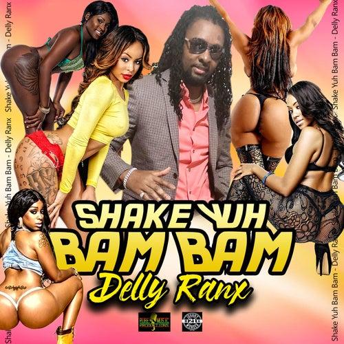 Shake Yuh Bam Bam by Delly Ranx