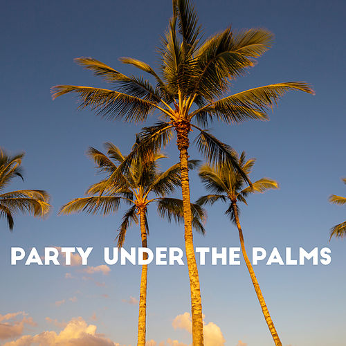 Party Under the Palms – Chillout Lounge, Sweet Summer Days, Secret Sin, Memories by Ibiza Dance Party