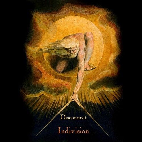 Indivision de The Disconnect