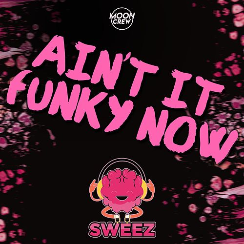 Ain't It Funky Now by Sweez