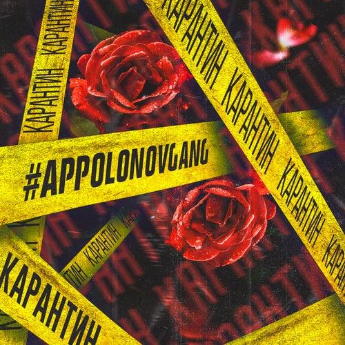 Карантин de #AppolonovGang