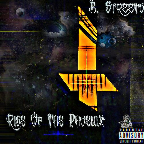 Rise of The Phoenix by B. Streets