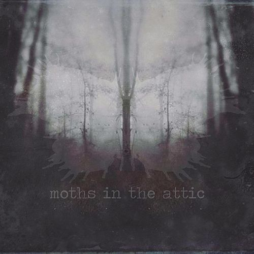Moths in the Attic by Moths in the Attic