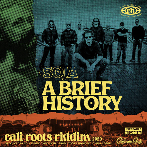 A Brief History de Soja