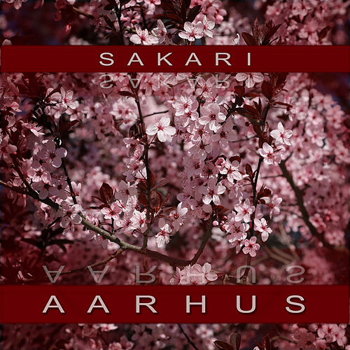 Aaarhus by Sakari