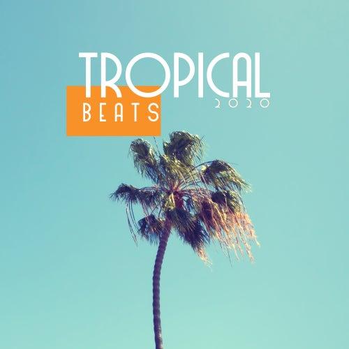 Tropical Beats 2020 by Ibiza DJ Rockerz