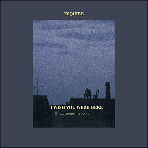 I Wish You Were Here by Esquire