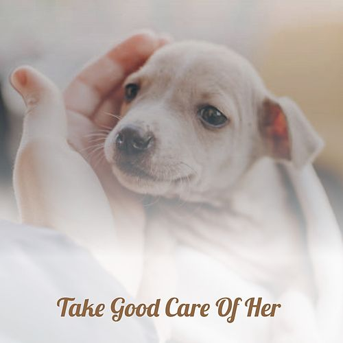 Take Good Care of Her de Adam Wade, Gene Vincent, Chris Connor, The Avons, Teresa Brewer, King Curtis, Steve Lawrence, Jim Reeves, The Lovin' Spoonful, Sandy Posey, Adam Faith, Mac Wiseman, Doris Day, Léo Ferré, Kai Winding