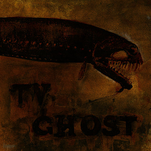 Cold Fish by TV Ghost