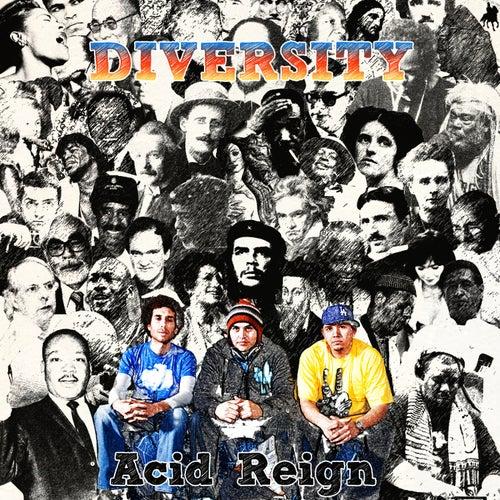 Diversity by Acid Reign