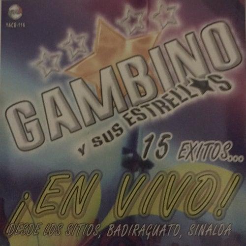 En Vivo von Gambino
