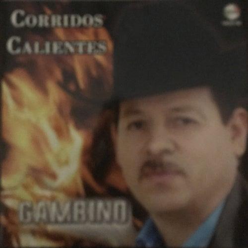 Corridos Calientes von Gambino