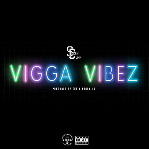 Vigga Vibez by Sean Conn