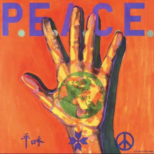 PEACE de Various Artists